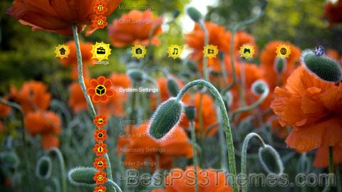 Flowers Theme 2