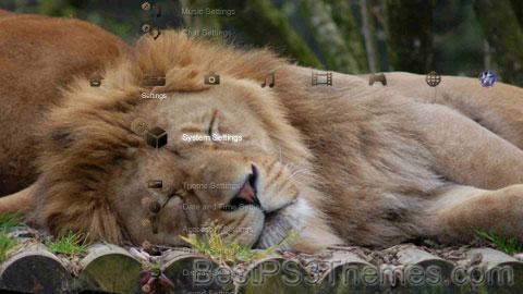 Lions-7 Theme